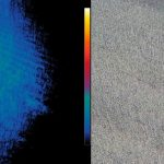 thermografie-wildtiere